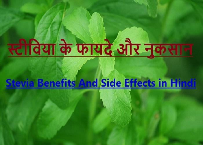 स्टीविया के फायदे और नुकसान – Stevia Benefits And Side Effects in Hindi