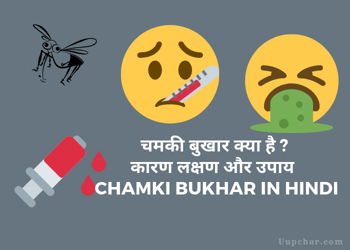 Chamki Bukhar (Acute Encephalitis Syndrome) in Hindi