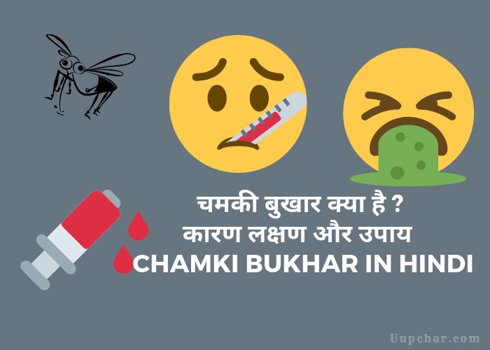 Chamki Bukhar (Acute Encephalitis Syndrome) in Hindi