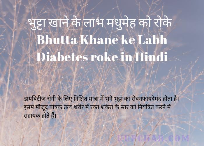 Bhutta Khane ke Labh Diabetes roke in Hindi