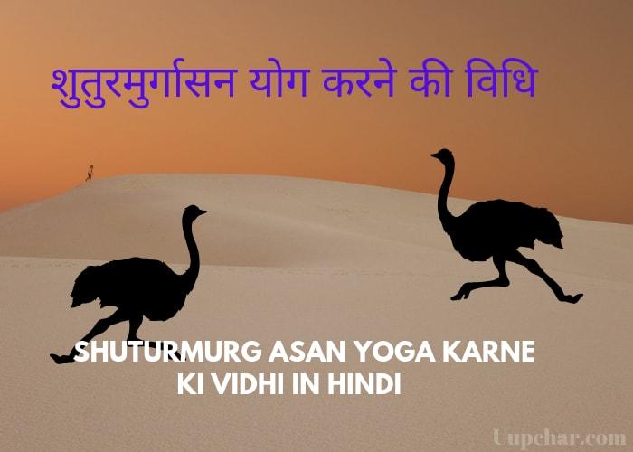 शुतुरमुर्गासन योग करने की विधि – Shuturmurg Asan yoga karne ki Vidhi in Hind